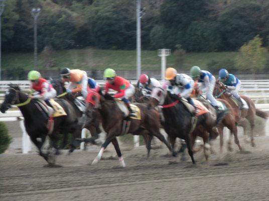 「高知けいば」における中国地区畜産協会協賛福山競馬記念特別競走 (個人協賛レース)の終了について