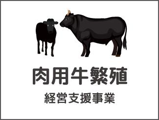 肉用牛繁殖経営支援事業