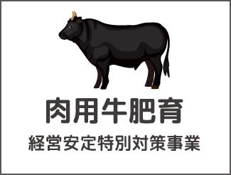 肉用牛肥育経営安定特別対策事業